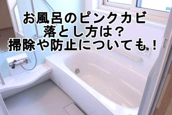 お風呂のピンクカビの落とし方