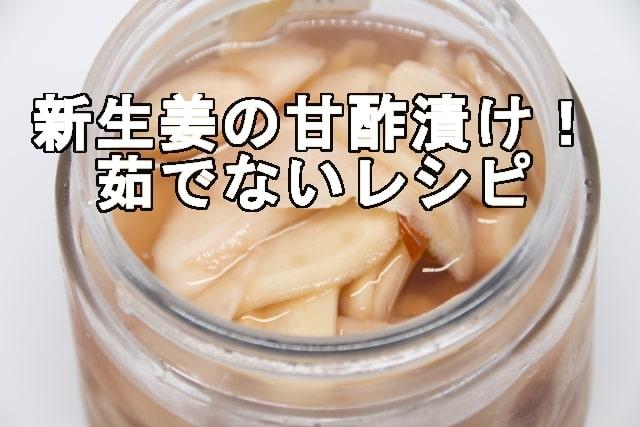 新生姜の甘酢漬け茹でないレシピ